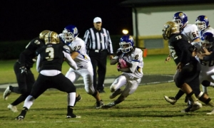 Devildogs' season ends at Greer