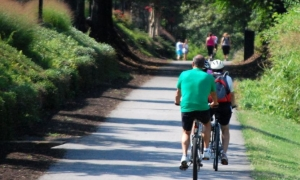 Citywide master bicycle plan results released