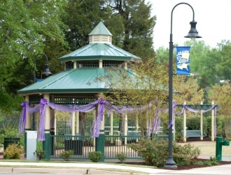 Travelers Rest gets set to 'paint the town purple'