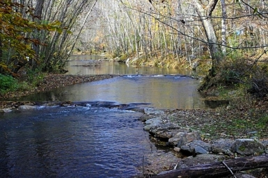 Fall trout fishing opportunities abound in SC mountains