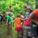 Family hikes offered at Paris Mountain State Park this summer